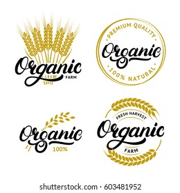 Set of Organic hand written lettering logos, labels, badges or emblems for natural fresh products. Ears of wheat. Isolated on white background. Vector illustration.