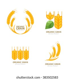 Set of organic wheat grain icons. Vector logo or label design elements. Cereals flat illustration. Concept for organic products, harvest and farming, grain, bakery, healthy food.
