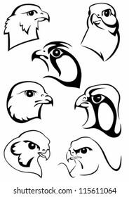 Set of original drawings of birds