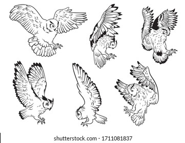Set of owls. Collection of silhouettes of owls with spread wings. A symbol of wisdom. Set of nocturnal predatory birds. Black and white illustration of birds on a white background.
