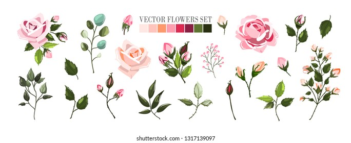 Set of pale pink rose flowers and green leaves. Floral bouquets, branch, arrangements for wedding invitation save the date or greeting card design. Vector illustration in watercolor style
