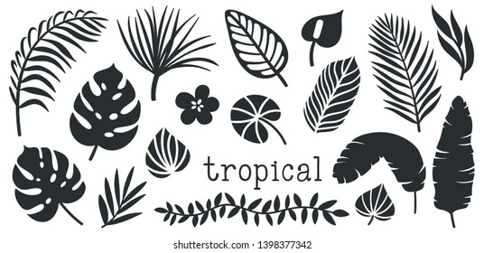 Set of palm leaves and flowers silhouettes. Black summertime poster. Collection of scrapbooking elements for beach party with exotic plants.