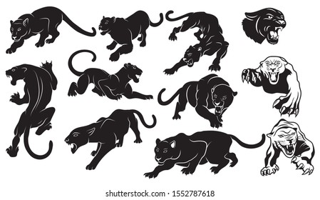 Set of  panthers. Collection of silhouettes of portraits of predatory wild cats. Set of wildlife and fauna inhabitants. Vector illustration on a white background. tattoo
