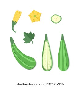 Set of paper cut zucchini. Origami squash whole, a piece, slice. Collection of vegetable marrow leaf and flower. Vector card illustration. Harvest courgette organic ingredient in paper art style