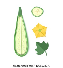 Set of paper cut zucchini. Origami squash half, a pieces,. Collection of vegetable marrow leaf and flower. Vector card illustration. Harvest courgette organic ingredient in paper art style.