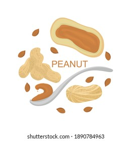 Set of peanuts, nuts, vector illustration in flat style