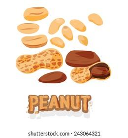 set of peanuts - vector illustration