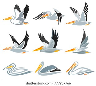 Set of Pelicans in different styles