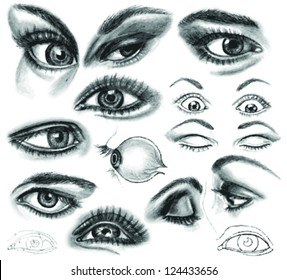 pencil drawing eye autotraced realistic sketch stock vector royalty
