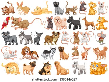 Set of pet character illustration