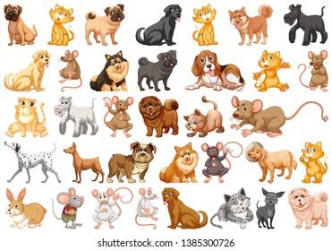 Set of pet character illustration