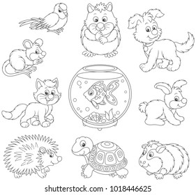 Set of pets including a cat, a dog, a parrot and other domestic animals, black and white vector illustrations in funny cartoon style for a coloring book