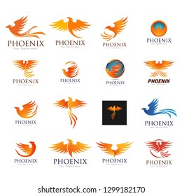 Set of phoenix bird logo templates, vector illustration isolated on white background. Collection of creative phoenix bird logotype templates, growth, development, power concept - Vect