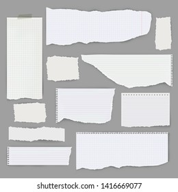 Set of pieces of paper of different types. Vector illustration.