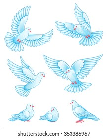 Set of pigeons - flying and sitting. Vector EPS10