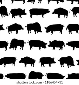 Set of pigs vector illustration