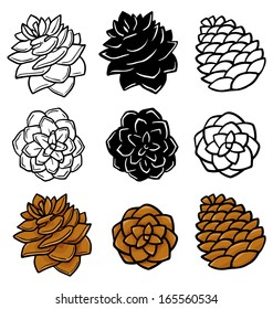 Set with pine cones isolated on white