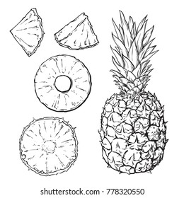 Set of pineapple in black and white colors, line art style, slices of pine apple, vector illustration isolated on white background, can be used for some coloring book