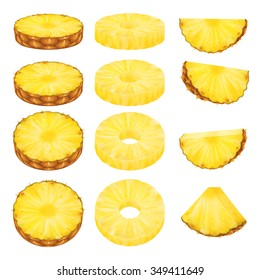 Set of pineapple slices isolated on white background. Vector illustration for decorative poster, emblem natural product. Concept for farmers market. Perfect for packaging design of cosmetics and food.