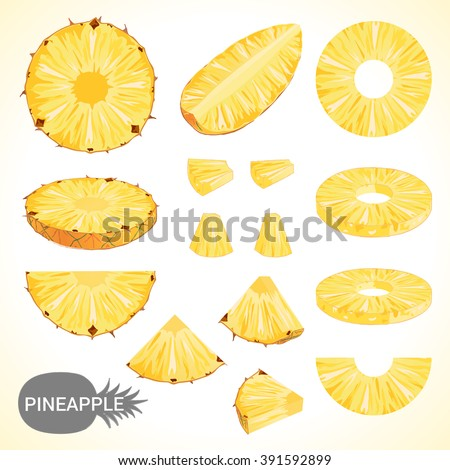 Set of pineapple in various styles vector format