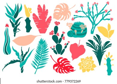 Set the plant objects, a collection with cacti, succulents and tropical leaves. Mammilia, prickly pear, haworthia, hathira, aloe, palm, monstera, hibiscus. Vector illustration.