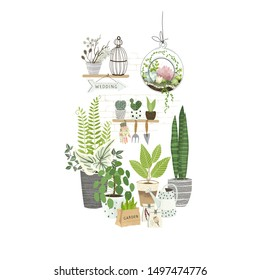 Set of plants in pots, cacti and succulents on shelf, terrarium plant, gardening tools. Cultivating home garden, showcase garden or flowers shop, greenhouse. Flat cartoon vector illustration.