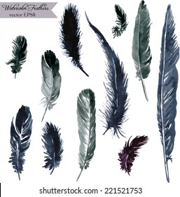 set of plumes, watercolor drawing feathers, hand drawn vector illustration