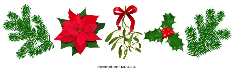 Set with Poinsettia, Holly berry, Mistletoe with berries and red bow, fir branches