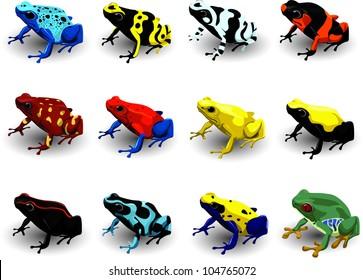 Set Poison Arrow Frog  Vector Illustration