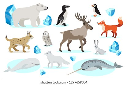 Set of polar animals icons, isolated on white background, lynx, polar bear and owl, mountain hare, red and Arctic fox, great auk, Atlantic puffin, narwhal, reindeer caribou, vector illustration