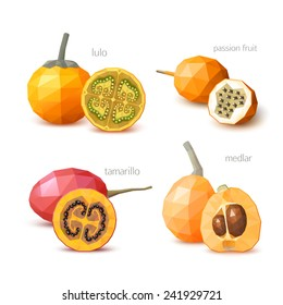 Set of polygonal fruit - tamarillo, lulo, medlar, passion fruit. Vector illustration