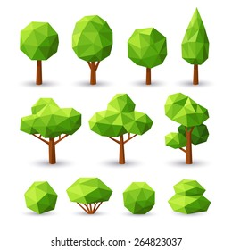 Set polygonal trees and bushes with different crowns.