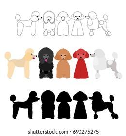 set of poodle group