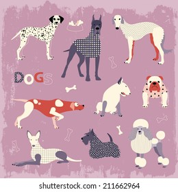 Set of popular dog breeds in vector. Pointer, Poodle, Bulldog, Russian Borzoi, Dalmatian, Pharaoh hound, Scottish Terrier, Bull Terrier, Great Dane.