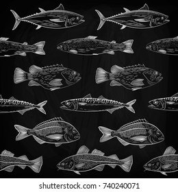 A set of popular sea fish swimming in a different direction. Tuna, cod, dorado, salmon, sea bass, mackerel. Sketch,drawing chalk on a blackboard , vector illustration