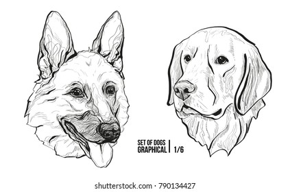 Set Of Portraits Of Dogs. Breeds German Shepherd And Labrador. Graphical  Vector Illustration