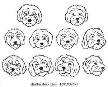 Set of portraits of various dogs. Collection of vector heads of dogs of the breed Goldendoodle. Print for clothes. Black and white drawing of domestic animals. Tattoo Grodl.