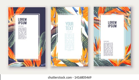 Set of poster  with tropical flowers - Strelitzia,South African plant, called crane flower or bird of paradise. Can be used as greeting, invitation card, template design, cover, party advertisement.