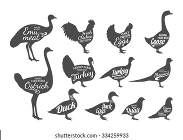 Set of poultry labels templates.