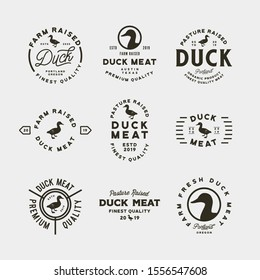 set of premium fresh duck meat labels. retro styled meat shop emblems, badges, design elements, logotype templates. vector illustration
