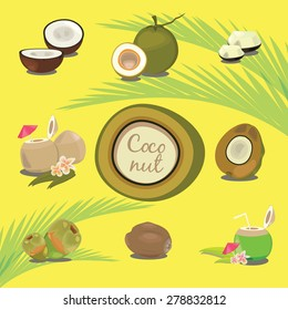 Set of Products of Coconut Tropical Fruit Description