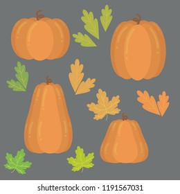 set of pumpkins for halloween and for Thanksgiving