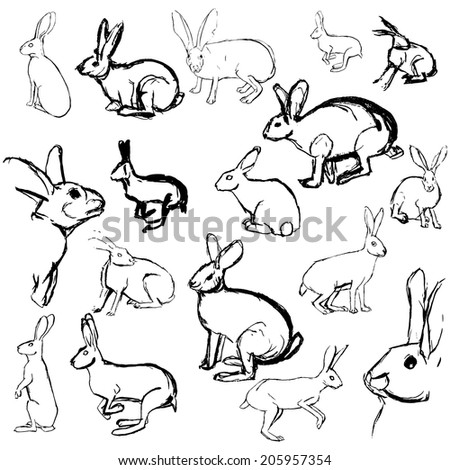 Set Rabbits Isolated On White Stock Vector Royalty Free 205957354