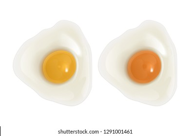 Set of raw eggs on white background, chicken eggs with bright yellow and orange yolks, top view, Realistic vector EPS 10 illustration of bird eggs