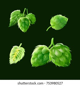 a set of realistic 3d illustration of the flowers of hops in many status such as cut in half,close-up views,hops with a leaf,back views isolated on dark green.