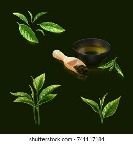 a set of realistic 3d illustration of tea leaves divided into many types such as green tea leaf, tip, tea plant, dried tea with a bowl, isolated on dark green.