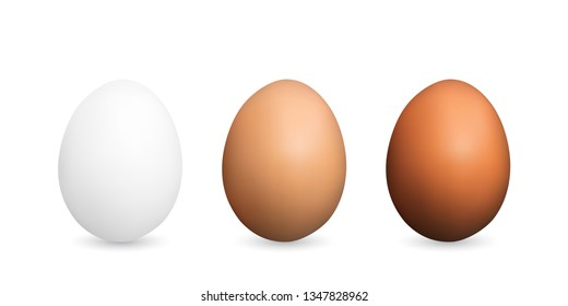 Set of Realistic Dark and Light Brown Whole Chicken Eggs. 3d Vector Illustration of Three Egg Collection