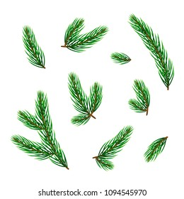 Set of realistic evergreen pine or fir twigs and branches isolated on white background.