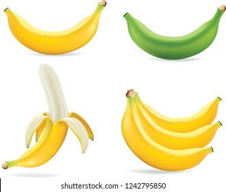 Set of realistic illustration bananas. Banana,half peeled banana,bunch of bananas isolated on white background, banana icon.Vector illustration.