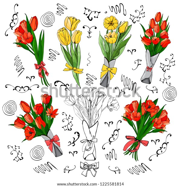 Set of red and yellow tulip bouquets. Hand drawn colored  sketch with tulip flowers and  leaves isolated on white background.Vector illustration.